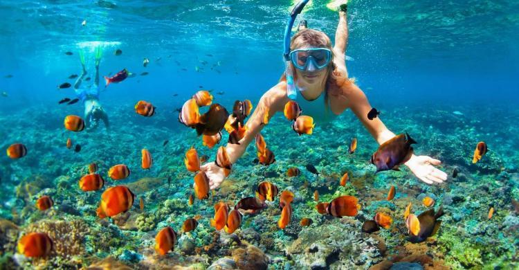 snorkel-arrecifes-isla-saona